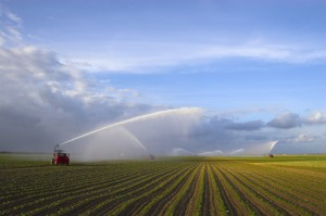 Agriculture currently accounts for more than 70% of global water usage